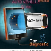 Auto Diagnostic scan/ Troubleshooting an Clearing code