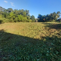 Freehold land princes town. Own deed