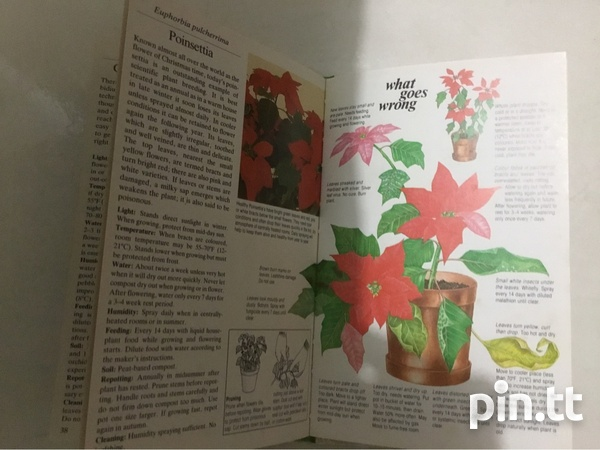 Book On Houseplants-2