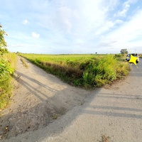 2 Acres Agriculturial Land in Felicity