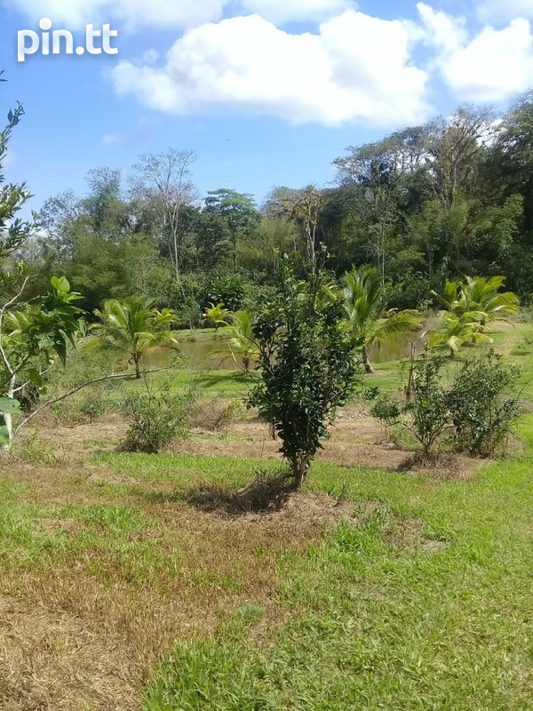 Agriculture Land, 7 Acres-1