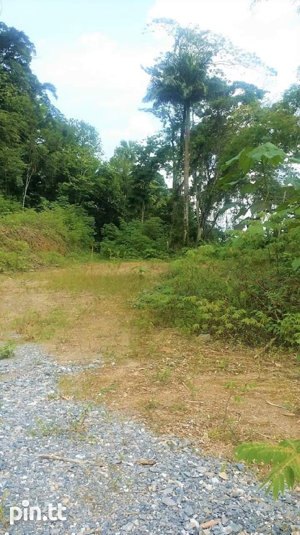 PLOTS OF LAND BLANCHISSEUSSE RD ARIMA CASH BUY ONLY-3