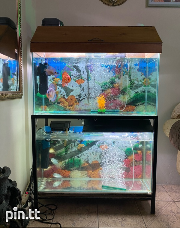 Two 3ft Fish Tanks-1