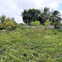 4883 SQ FT PLOT OF LAND BRAZIL FINAL APPROVALS