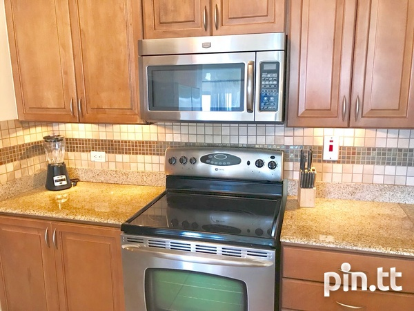 3 Bedroom Fully Furnished and Equipped Apt One Woodbrook Place.-10