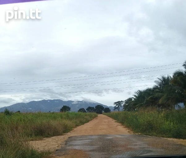2 acres Caroni agricultural land -Warrenville-3