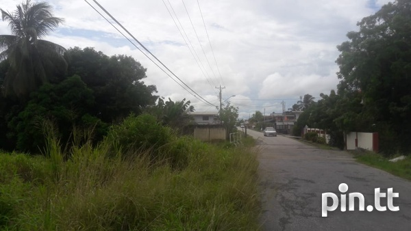 2 Acres Caroni Agricultural land. Main Road Perseverance.-2
