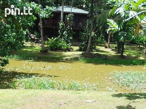 21 acres Talparo, 7 houses, fully cultivated-3