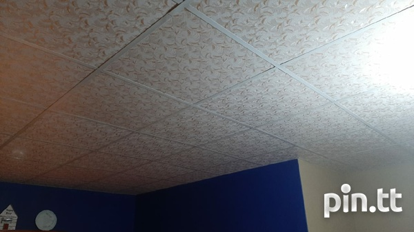Professional Ceiling-5