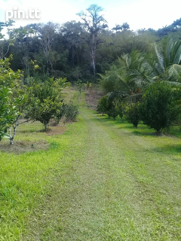 Agriculture Land, 7 Acres-4