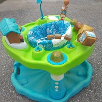 Used Child Jungle Gym/Bouncer
