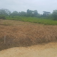 5000SQ FT LOT LEASEHOLD LAND SANGRE GRANDE LAST 1 CASH BUY