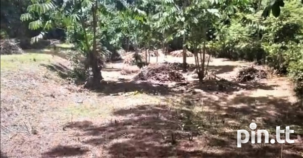 TOBAGO 1 ACRE OF LAND - REDUCED-3