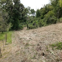 1/2 Acre Residential Land with Approvals. Great value for money.