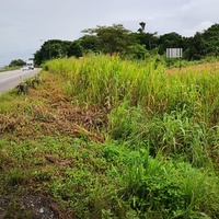 7.5 Acres along the South Bound Lane of the SH H/way- Claxton Bay