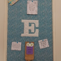 Changeable Aqua Blue Framed Pin Board with FREE Push Pins to match