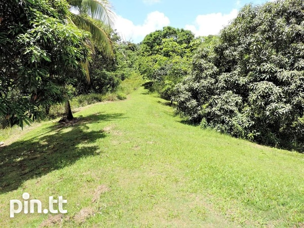 4 AND A HALF ACRES OF LAND CAPARO-3