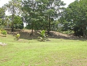 20 Acres Cumana, Toco