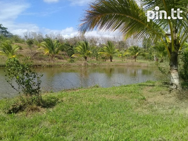 Agriculture Land, 7 Acres-2