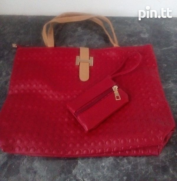 Textured Handle Bags with carrying purse-3