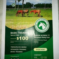 Horse back riding classes