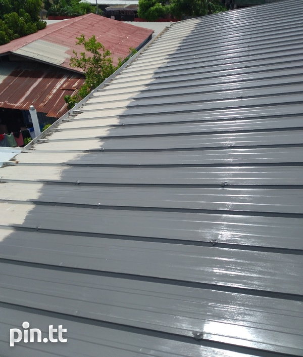 Roof painting-4