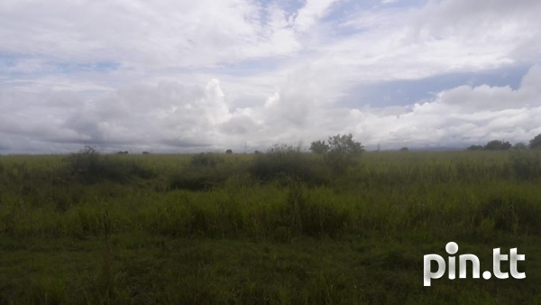 2 Acres Caroni Agricultural land. Main Road Perseverance.-7