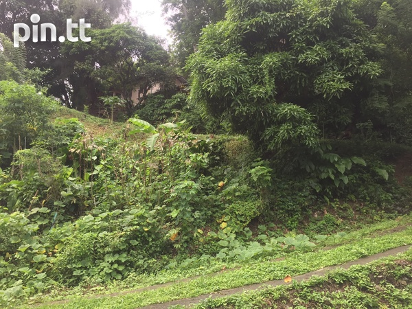 House and Land on Plymouth Road, Whim, Tobago-2