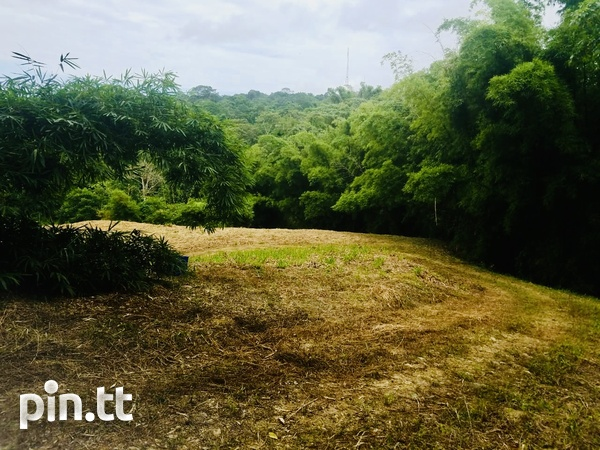 30 Acres of Land in Central