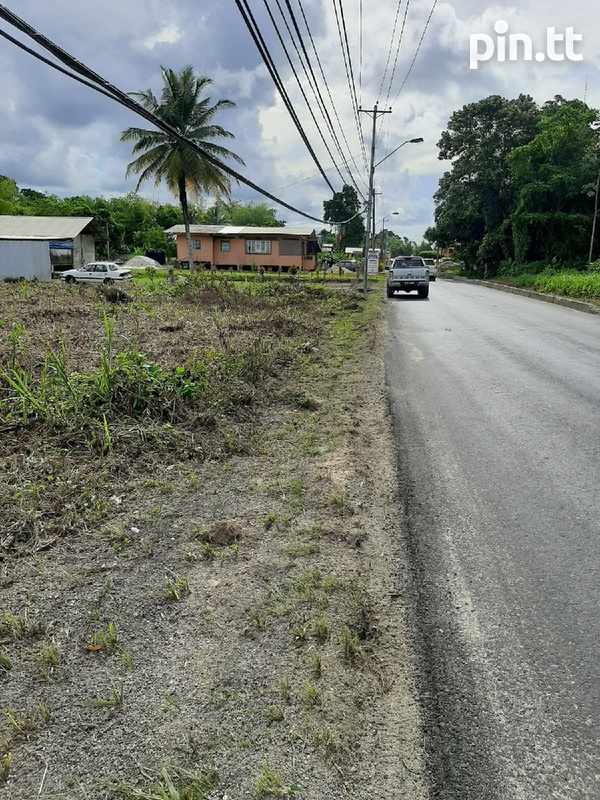 5 Acres Prime Residential Freehold Land in Sangre Grande.-2