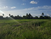 6 lots of Freehold Land, Mangray Street, Chaguanas