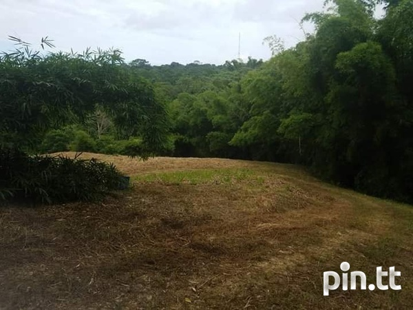 Agriculture land 30 acres-3