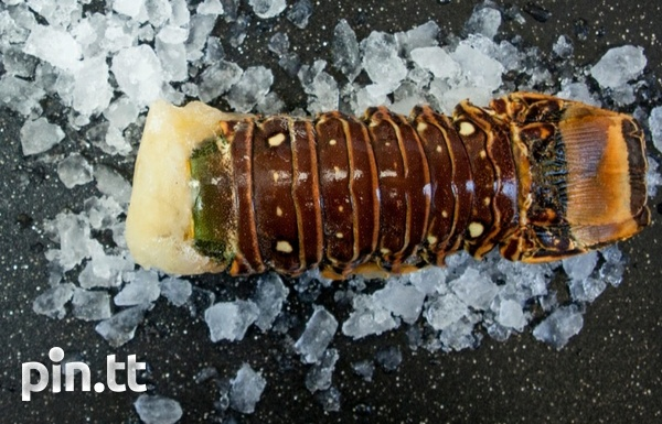 Lobster Tails Cleaned-1