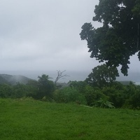 2.78 Acres of homestead land with amazing view, Tobago