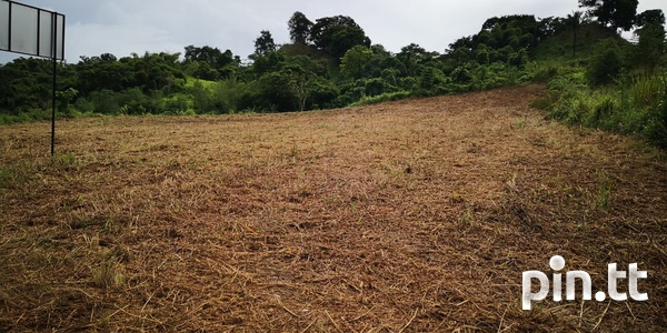 7.5 Acres along the South Bound Lane of the SH H/way- Claxton Bay-2