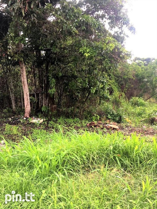 Plot Of Land With Access To All Amenities Freeport.-3