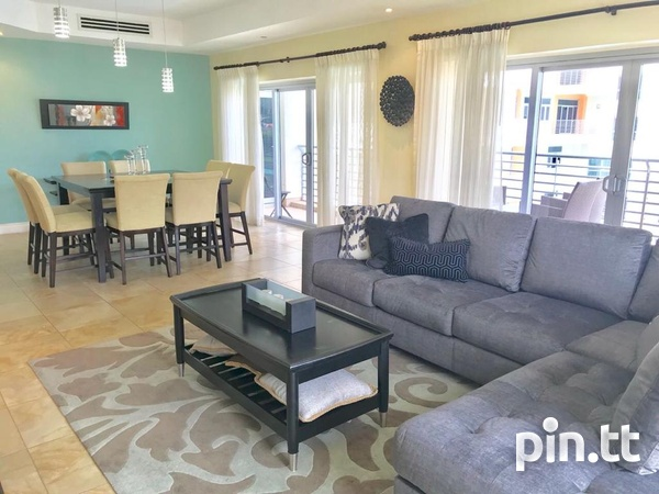 3 Bedroom Fully Furnished and Equipped Apt One Woodbrook Place.-7