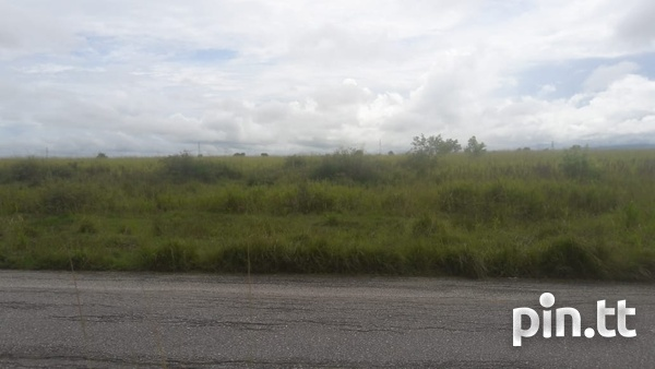 2 Acres Caroni Agricultural land. Main Road Perseverance.-8