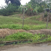 7481 SQ FT PLOT OF LAND BARRACKPORE ALL APPROVALS
