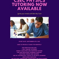 1-on-1 Physics Tutoring with STEM Professionals