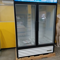 2 door glass freezer