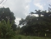 1 Acre of Land in Arima