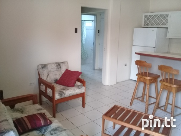 Queens Park Savannah Apartment with 1 Bedroom-3