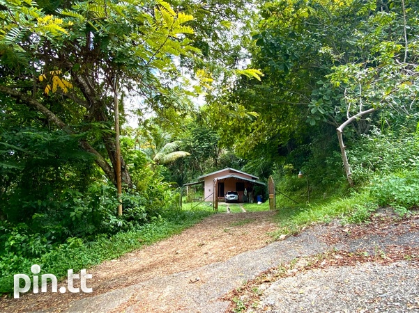 8 BEDROOM HOUSE ON 5 ACRES - ACONO, MARACAS - Payment Plan Available-6