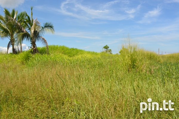 Couva Agricultural Land, 2 Acres-4