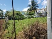 1 Lot of Land 5049sqft Freeport behind Courts