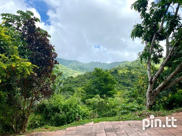 8 BEDROOM HOUSE ON 5 ACRES - ACONO, MARACAS - Payment Plan Available-7