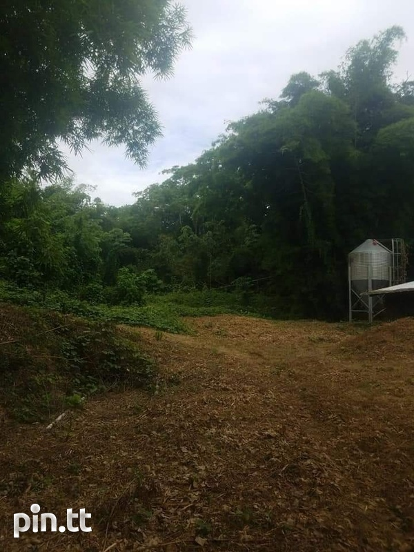Agriculture land 30 acres-2
