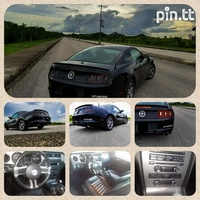 Ford Mustang, 2014, PDD