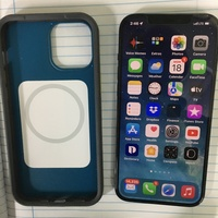 iPhone 12 Pro Max and case